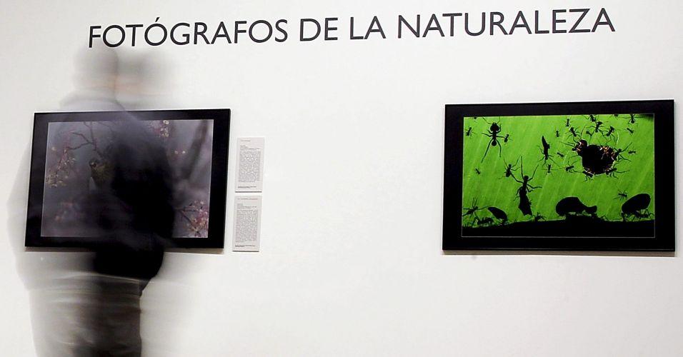 Exposição na Espanha