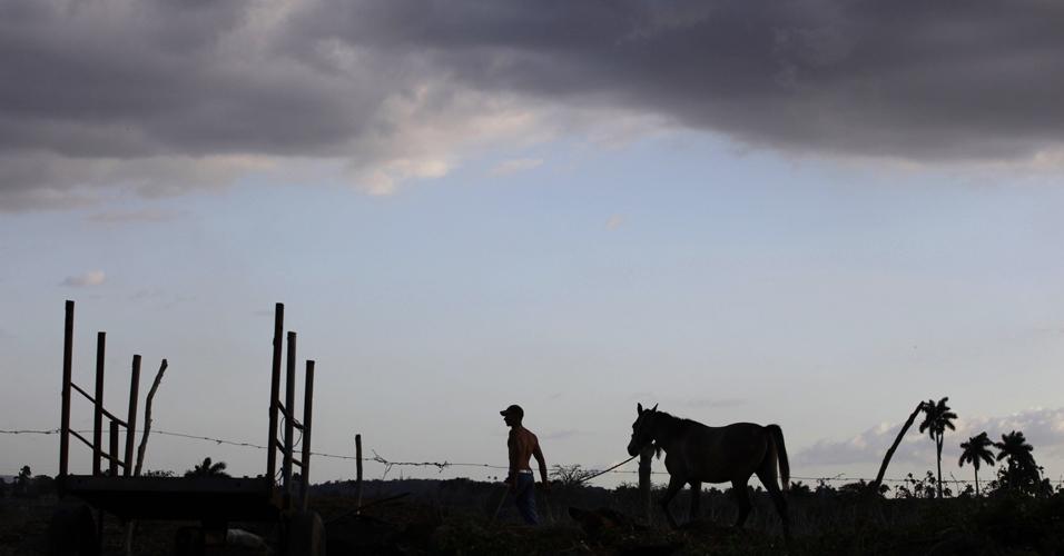 Fazendeiro e cavalo