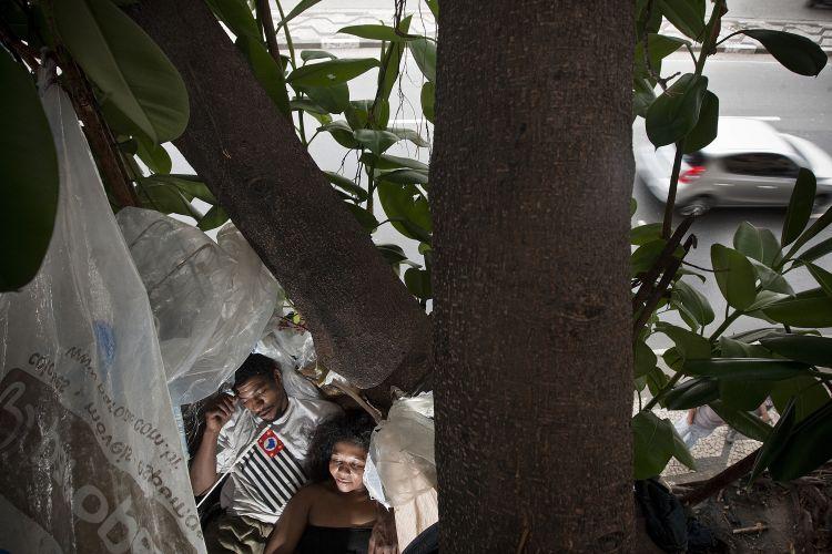 Morador de rua vive em árvore