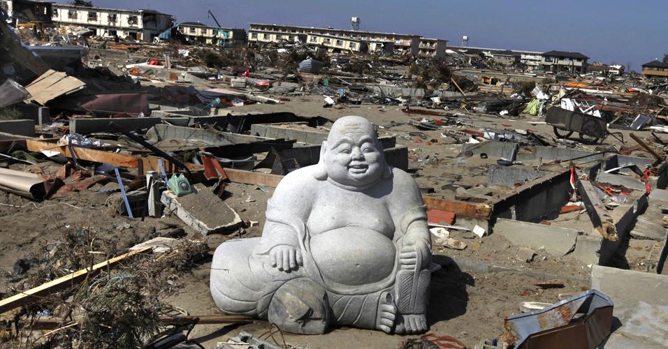 Buda resistente
