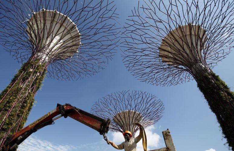 Jardim em Cingapura