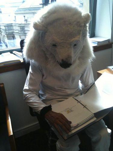 Urso de grupo ambientalista