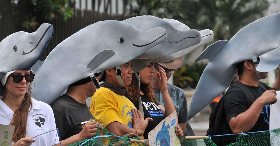 Em defesa dos golfinhos