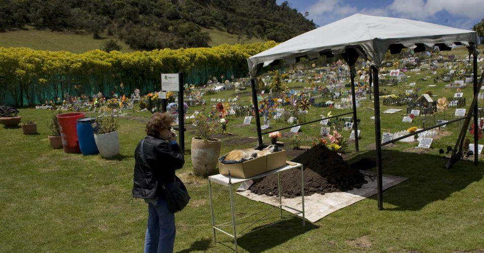 Cemitério de animais