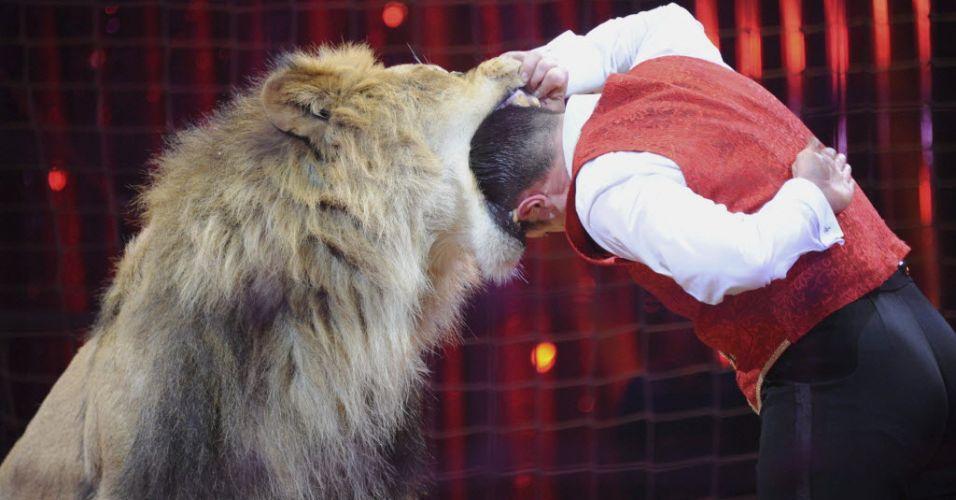 Dentro da boca do leão