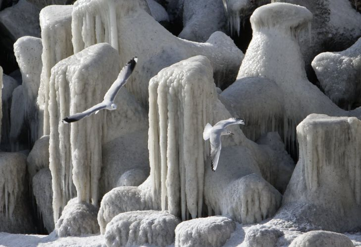 Mar Negro congelado (Romênia)