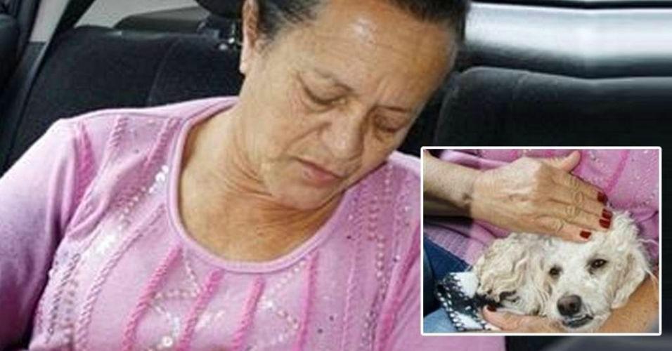 Poodle salva dona de ataque de rottweilers